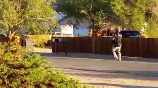 SWAT TEAM IN APPLE VALLEY