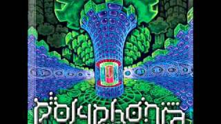 Polyphonia - Time Is Speeding Up