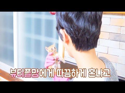 Eng) (꽁냥이1탄) 집에 들어온 아기길냥이를 잡