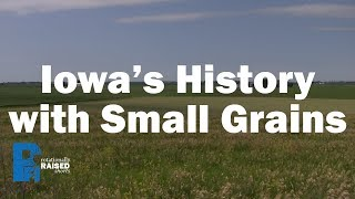 Iowa's History with Small Grains