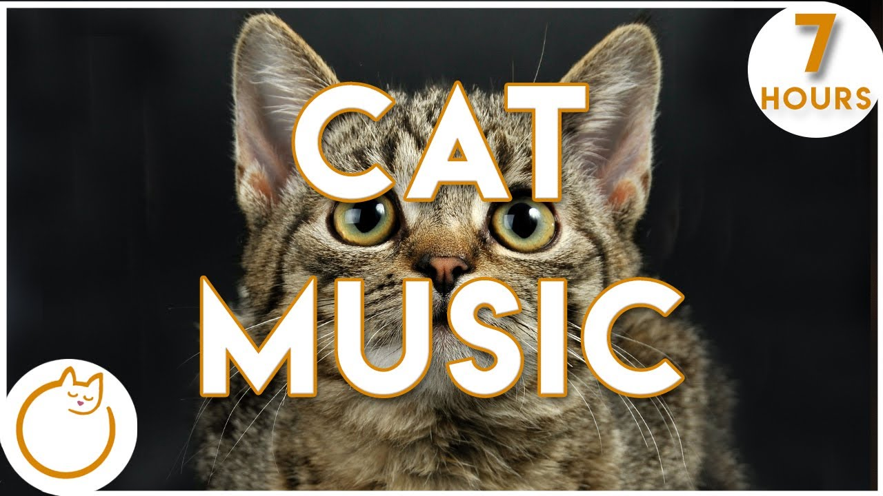 Relax Your Cat! 7 HOURS of The Most Soothing Feline Music YET