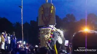Aanayadi gajamela 2017  Pambadi Rajante Mass Entry..