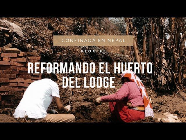 VLOG#5 Reformando el huerto del lodge donde me hospedo 🇳🇵
