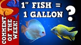 1 gallon of water per 1 of fish comment of the week ep 9