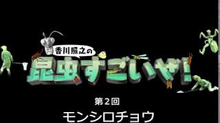 Eテレ香川照之の「昆虫すごいぜ!」 https://www.nhk.or.jp/school/sugo...
