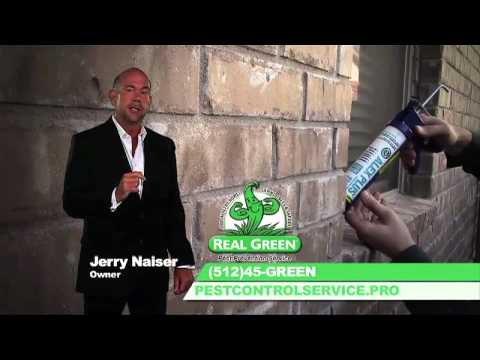 Real Green Pest Control Service and Pest Prevention Service - Austin, Texas