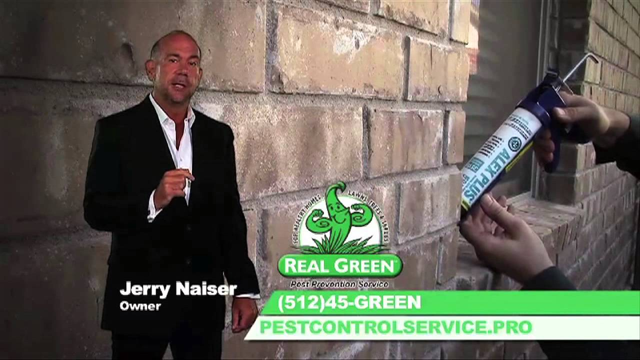 Real Green Pest Control Service And Prevention Austin Texas