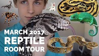 Download MARCH 2017 REPTILE ROOM TOUR (TEGU, CHAMELEON, SNAKES, GECKOS, AND INVERTEBRATES) Mp3 and Videos