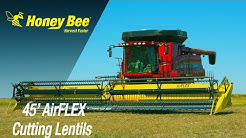 Honey Bee   AirFLEX, 45 Foot   Lentils   Saskatchewan   side view