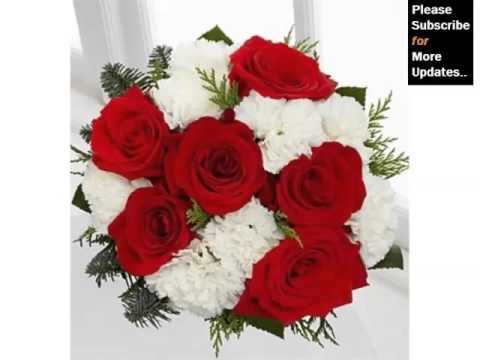 Red And White Carnation Bouquet | Picture Set Cute Natural Carnation Flowers