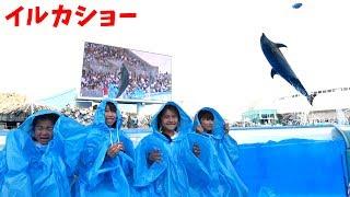 前列危険!イルカショーでびしょ濡れに><にゃーにゃちゃんねるさんと女子5人でデート♡himawari-CH thumbnail
