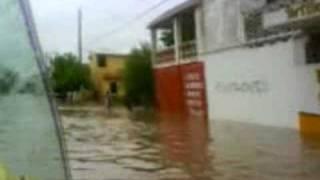 la canaria en la inundacion info macapule