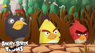 "Angry Birds Toons 2 Ep.21 Sneak Peek - ""Eating Out"""