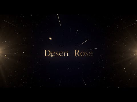 Desert Rose Round | Royal Rampage | IFJD Fashion Show 2019