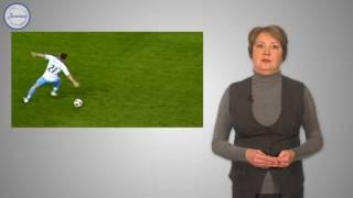 Биология 8 Первая помощь при травмах вывихах и переломах