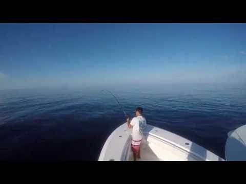Offshore Tuna and Wahoo