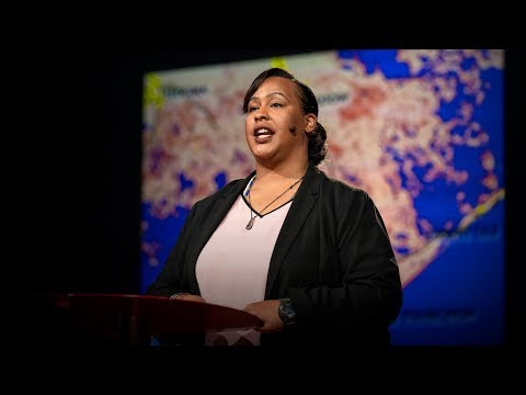 Video image: Climate change will displace millions. Here's how we prepare - Colette Pichon Battle