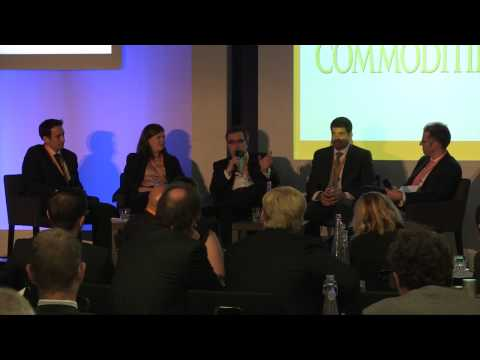 Are commodities still as reliable and diversified as they used to be? World Commodities Week 2013