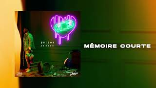 DADJU - Mémoire Courte (Audio Officiel)