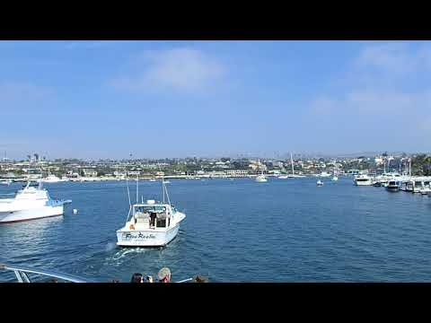 Following Fishing Boat out of Newport Harbor - Davey's Locker Whale Watching Tour - CA