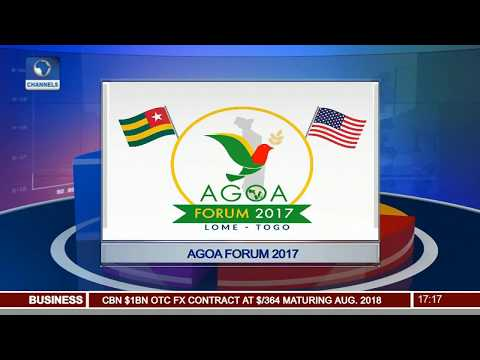 AGOA Forum 2017: Neubert Says Diversifying From Oil Can Help Nigeria
