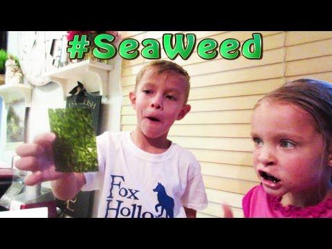 Children Addicted to SeaWeed!
