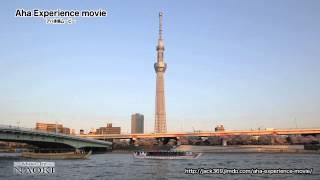 解答はこちら→http://jack369.jimdo.com/aha-experience-movie/aha-expe...