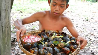Cook And Eat Snail Recipes Cooking Turbo Snails Recipe Cooking Snail For Food Eating Delicious