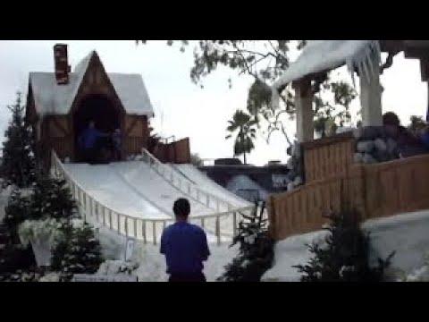 Tillman the Bulldog & Friends Snowboarding in Rose Parade