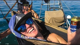 Video Chillin' with 10,000 penguins, seals and dolphins!! Sailing Vessel Delos Ep. 146 download MP3, 3GP, MP4, WEBM, AVI, FLV November 2017