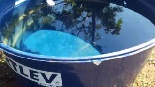 Como colar uma caixa d'água de plástico (Polietileno) resultado final