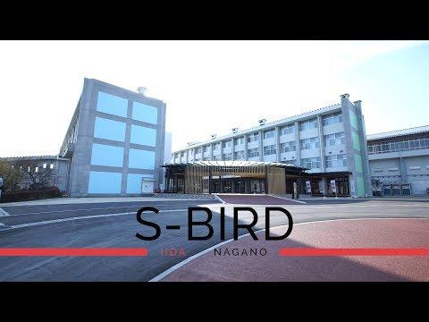 S-BIRD 長野県で一番大きい黒板でARTしよう!〜チョークアート 吉沢さやか編〜