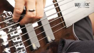 The Pro Series Streamer LX 6-String Fretless - with Andy Irvine