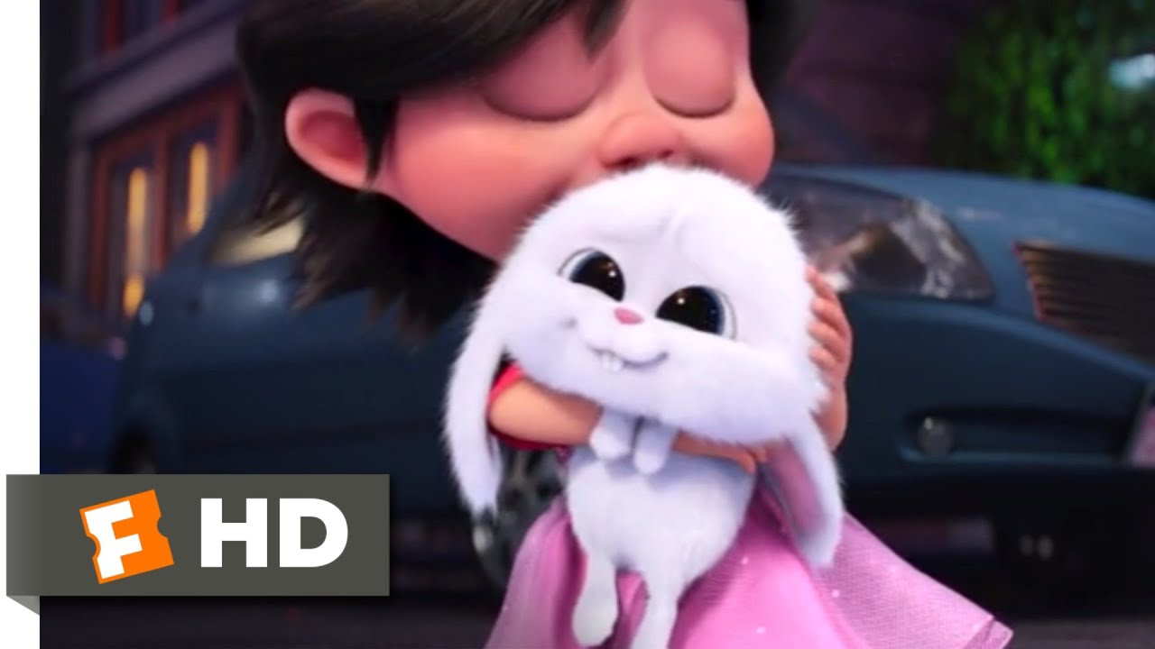 Download The Secret Life of Pets - Puppy (And Bunny) Love   Fandango Family