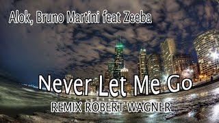 Baixar Alok,Bruno Martini feat Zeeba - Never Let Me Go (Remix Robert Wagner)
