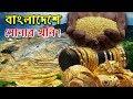বাংলাদেশে সোনার খনি আবিস্কার ! তাও একটি নয় তিন তিনটি সোনার খনি ।। Gold Mine of Bangladesh