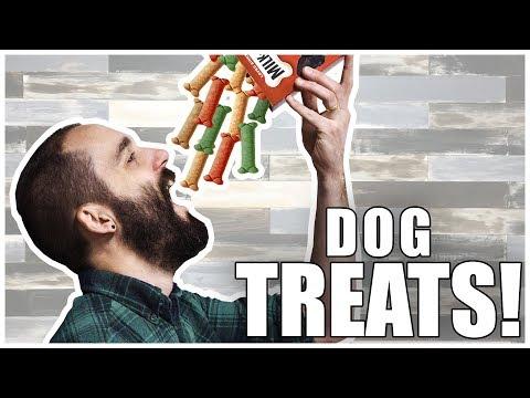 dog-treat-taste-test-|-bone-appétit-|-episode-15