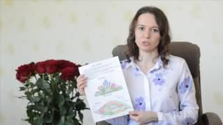 видео Семь типов цветника