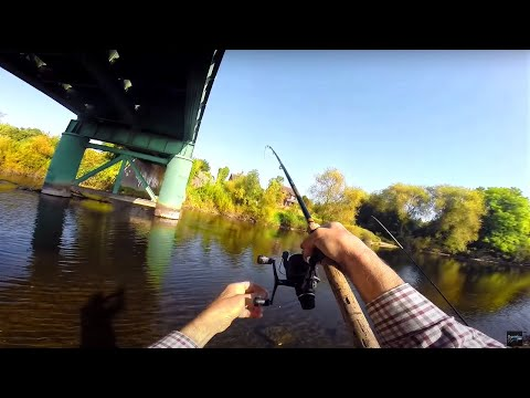 Fishing With Horse Feed & Luncheon Meat - Solo Fishing!