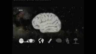 Quarks & Co: Die Suche nach Außerirdischem Leben (2009)