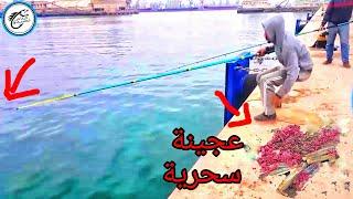 عجينة سحرية أغرت لنا العديد من الأسماك سبحان الله!!!
