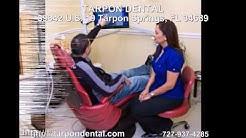 dentist tarpon springs fl