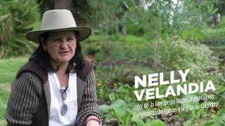 1325: Mujeres resueltas a construir paz - Nelly Velandia, ANMUCIC
