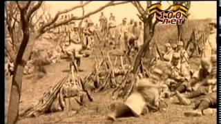 Лицо войныПотехинаЕ И документальный мини фильм к 100летию первой мировой войны