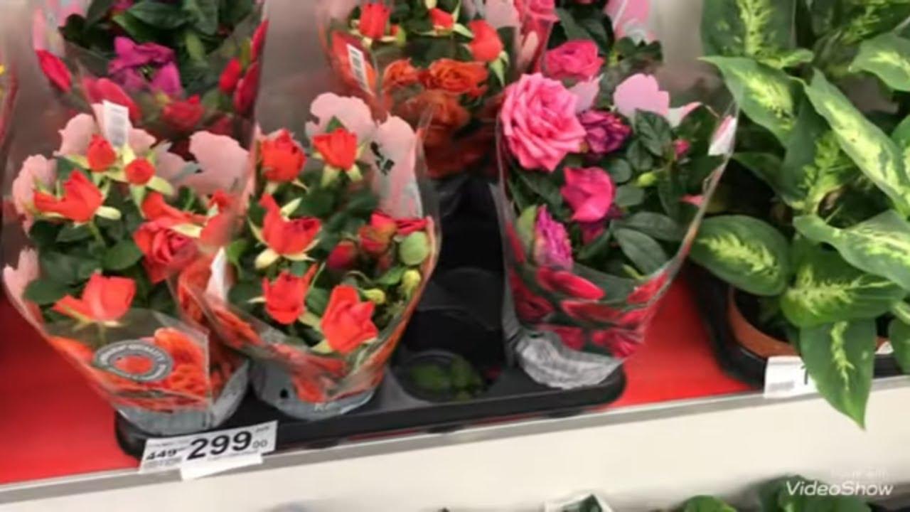 Цветы в магазин ашан новосибирске