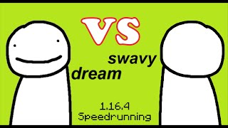This is what happens when you try to beat Dream's speedrun record...