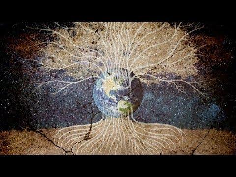 Download Ancient Civilizations -  Tree of Life