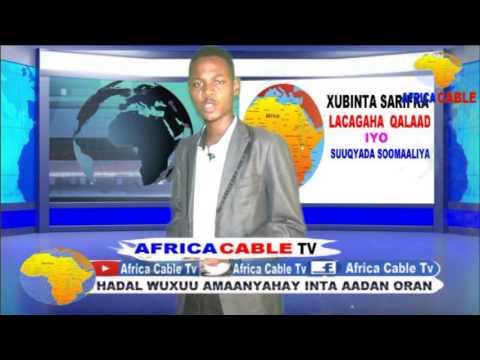 XUBINTA SARIFKA LACAGAHA QALAAD AFRICA CABLE TV 31 3 017