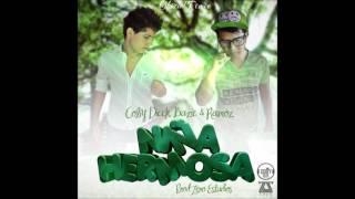 MI NIÑA HERMOSA - Coby Salinas, David Ramoz & Bazic Prod.Zero Estudios