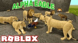 ROBLOX WILD SAVANNAH (Testing A) ALPHA EAGLE! LION'S PRIDE VS Random Birds - FUNNY Roleplay Moments